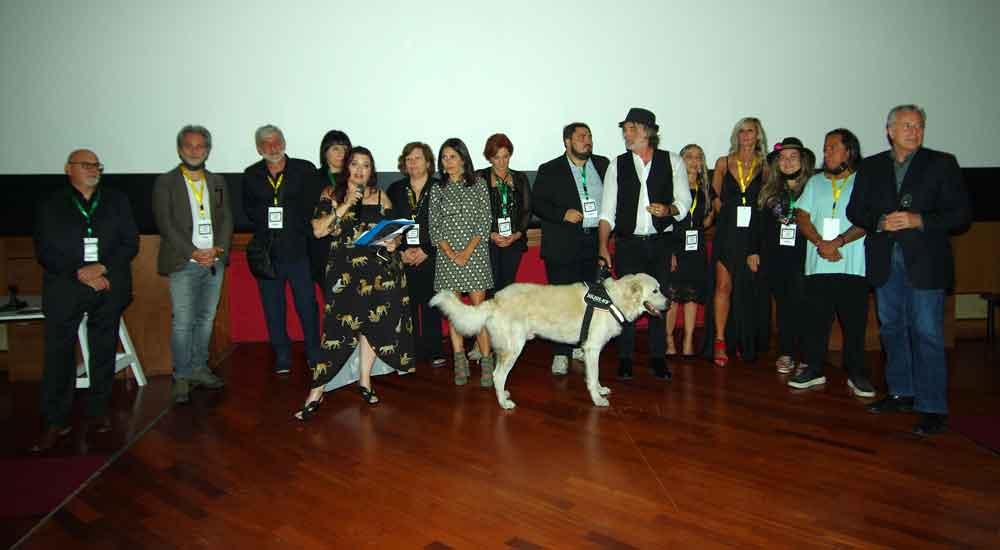 Un successo il Pet Carpet Film Festival.